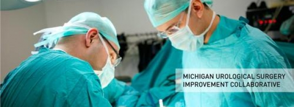 Michigan Urological Surgery Improvement Collaborative